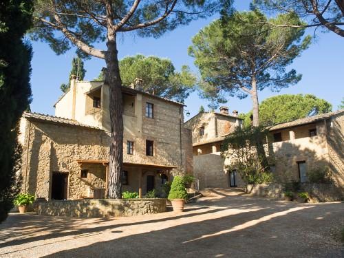 Borgo Taddei - vingård med historisk sus